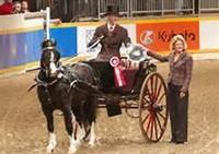 Royal Winter Fair & Horse Show